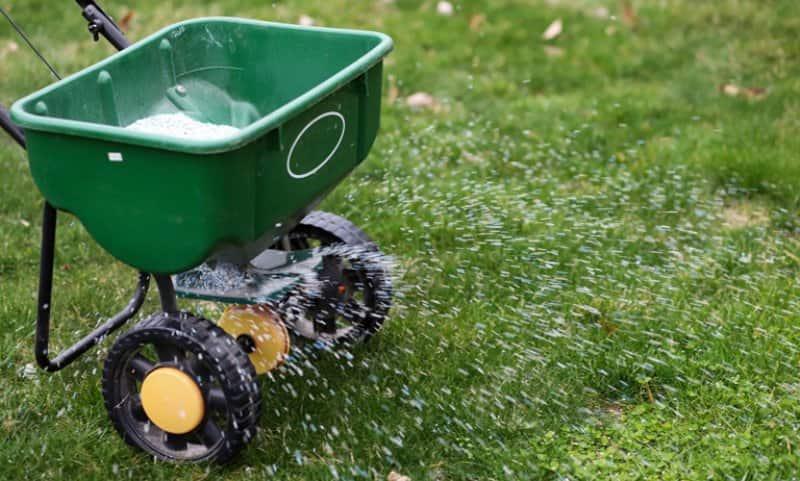 Lawn fertilizer spreader in use (Photo by Robin J. Gentry - stock.adobe.com)