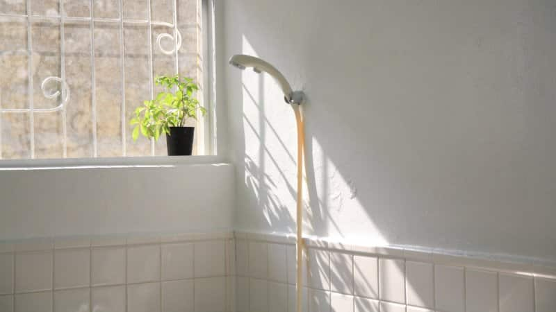 A sunlit handheld shower head (Photo by masayukisesoko/RooM via Getty Images)