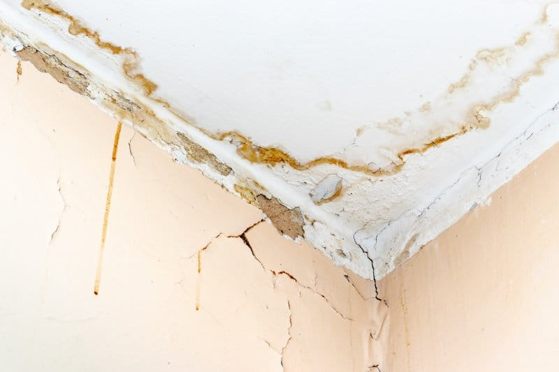 A ceiling and a wall with severe water damage (Photo by ReaLiia - adobe.stock.com)