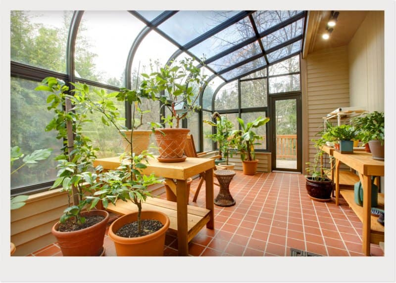 sunroom plant conservatory greenhouse (Photo by © Irina88w/Getty Images)