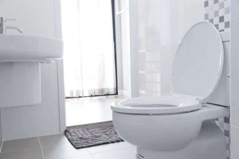 toilet in home bathroom