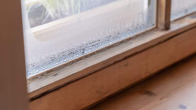 Window with condensation (Photo by Bihlmayer Fotografie/Shutterstock.com)