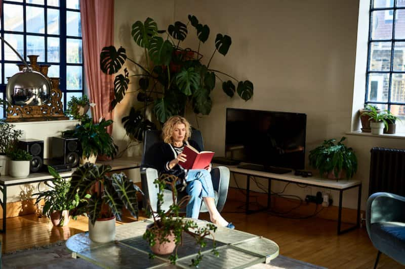 woman sits in chair reading with indoor tree in background (Photo by 10'000 Hours/DigitalVision via Getty Images)