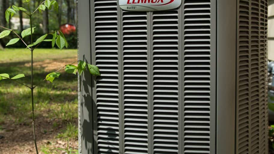 A heat pump surrounded by plants.