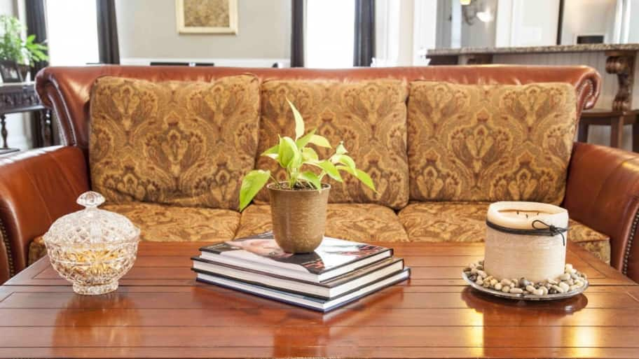 coffee table, couch, plant, books, living room