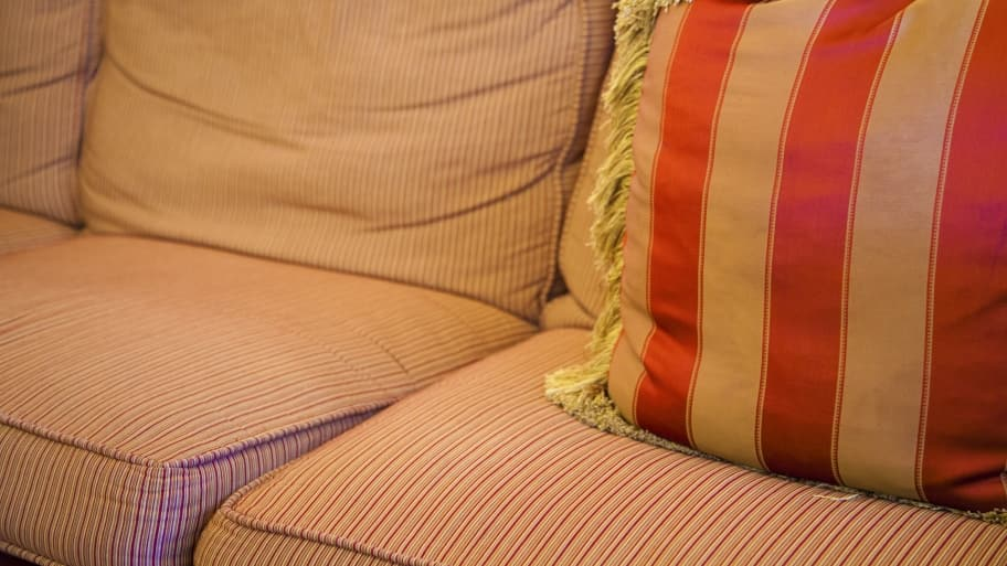 There are some factors to consider before you call in a professional to clean your sofa. (Photo by Photo by Katelin Kinney)