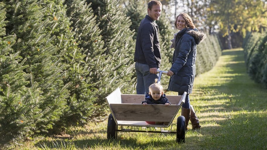 couple at tree farm with baby in cart