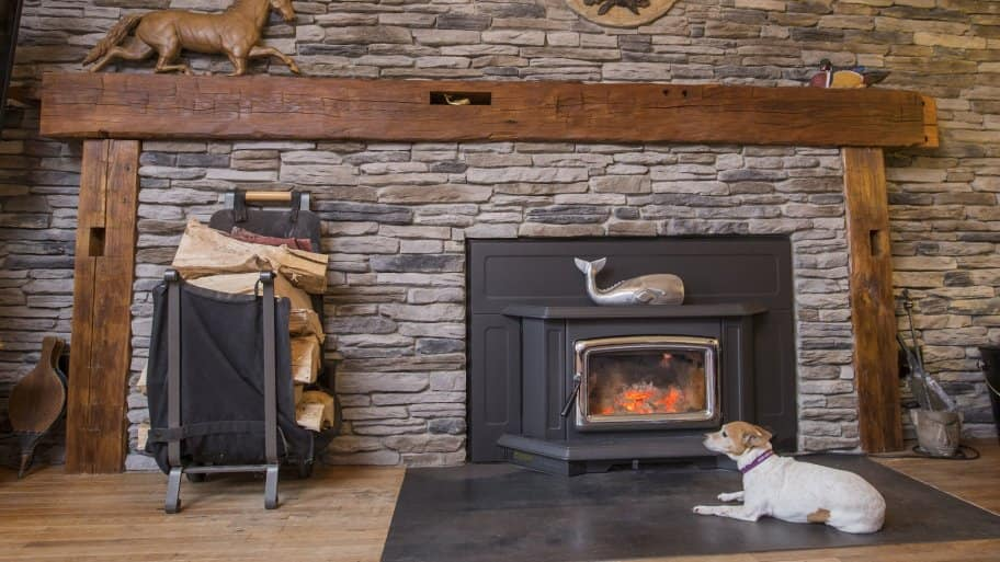 dog in front of fireplace