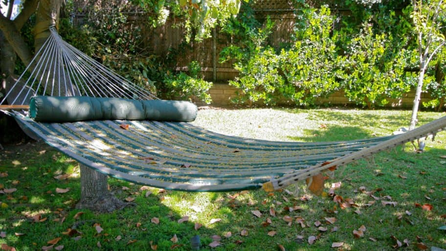 A hammock hanging in a backyard