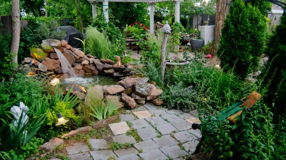 beautiful backyard landscaping with koi pond