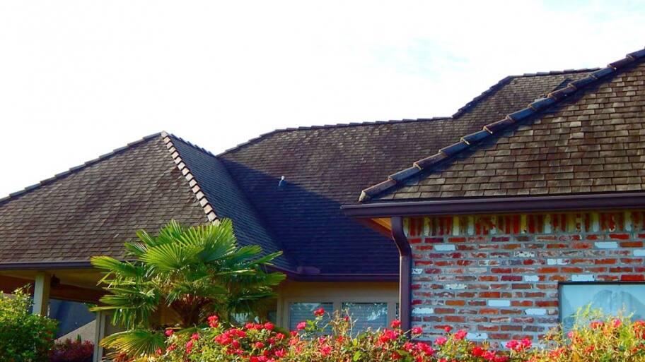 black algae asphalt roof