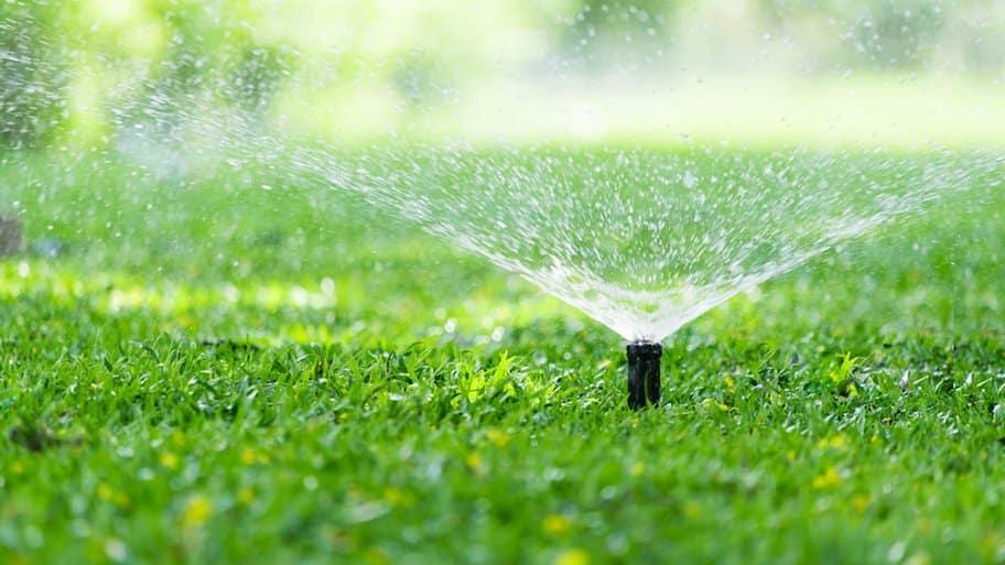 sprinkler in green grass spraying water
