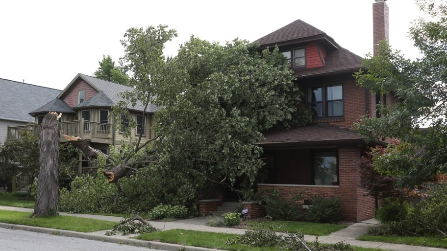 tree fallen on Indianapolis home