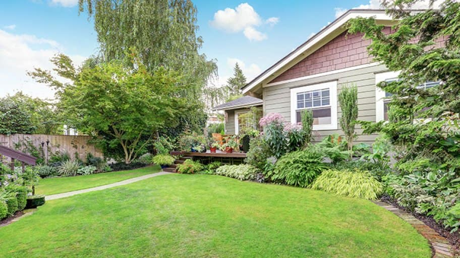 Nicely landscaped back yard