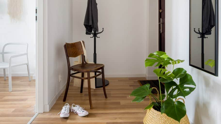 A cozy hallway with a plant and a chair (Photo by Dariusz Jarzabek - stock.adobe.com)