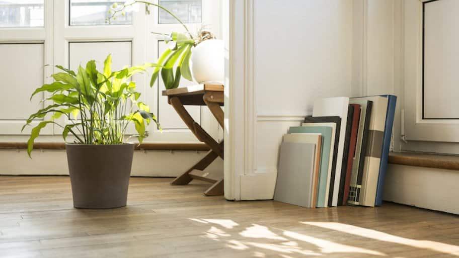 light wood engineered hardwood floor with books, potted plants, and stool
