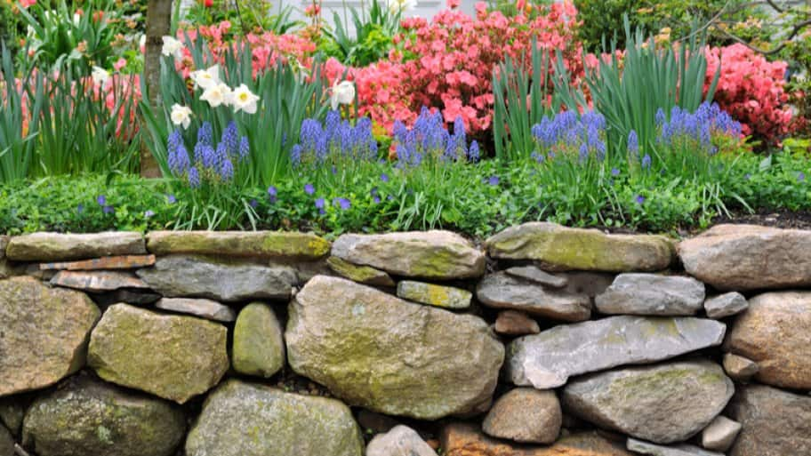 Garden of flowers with stone retaining wall