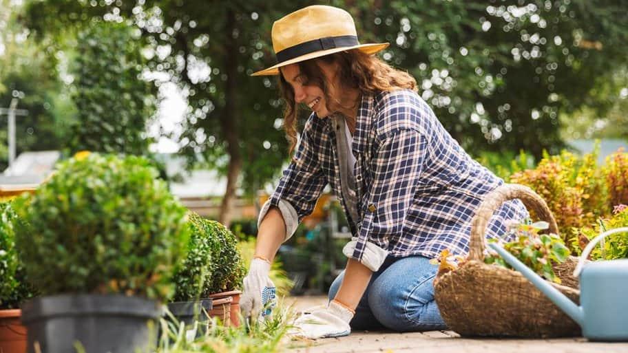 Gardener works in flower beds