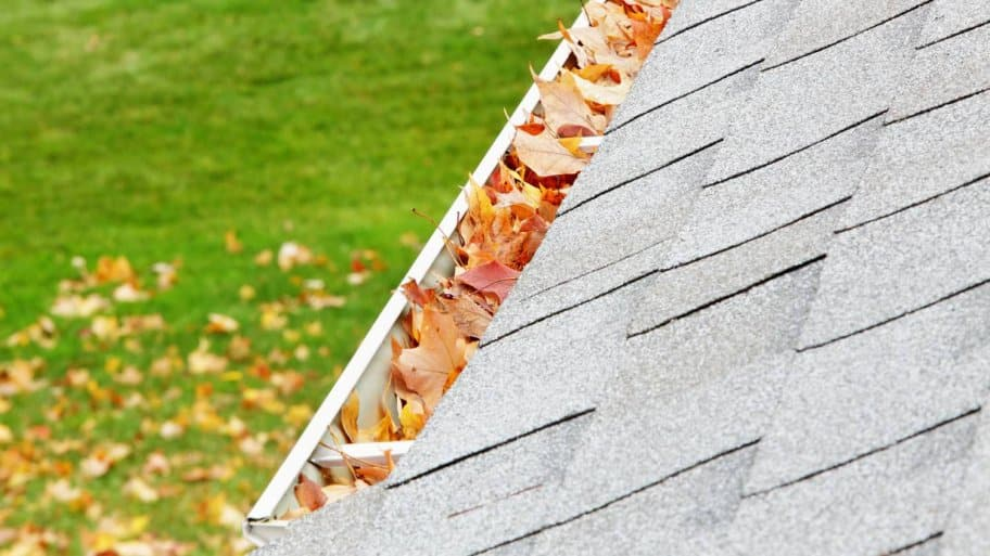A gutter filled with autumn leaves