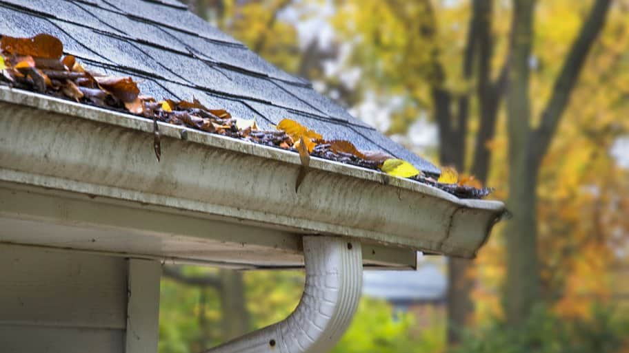 old gutters with leaves (Photo by Frank Espich)
