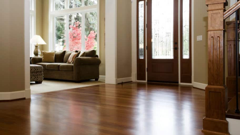 a home entryway with dark wood floor and partial view of living room with carpet and couch