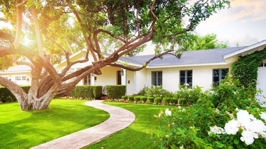 a one-story white house with sun shining through large tree, winding sidewalk, and green grass (Photo by adogslifephoto - stock.adobe.com)