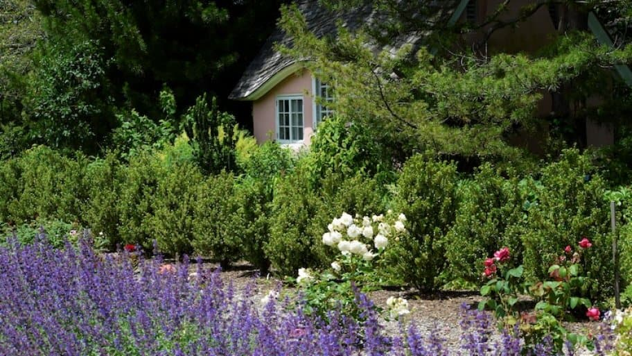 a small cottage surrounded by plants and lavendar (Photo by MRoseboom - stock.adobe.com)