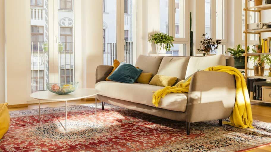 a bright living room with windows and a red and tan area rug (Photo by  © Westend61/Getty Images)