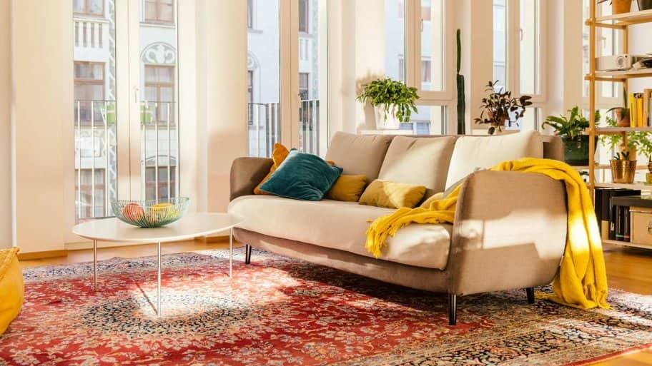 Oriental rug in living room