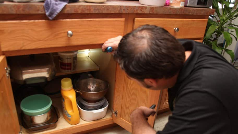 man inspecting kitchen for roaches