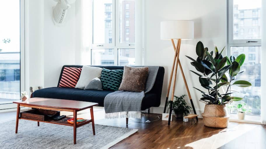 living room interior with modern furniture, large windows, and a rubber plant in corner