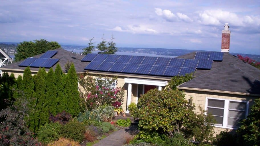 solar panels on roof surrounded by trees