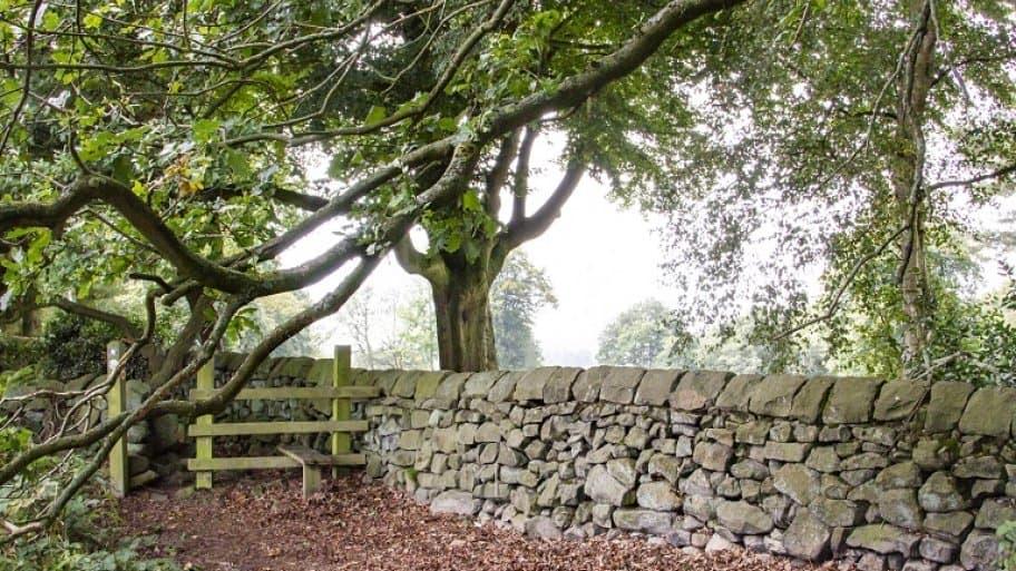 Stone wall along footpath