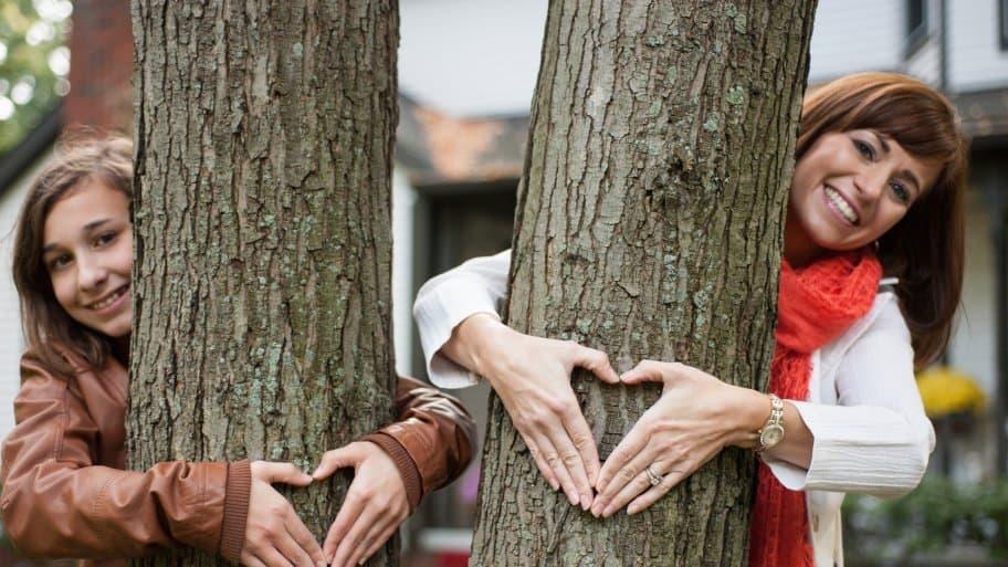 people hugging trees