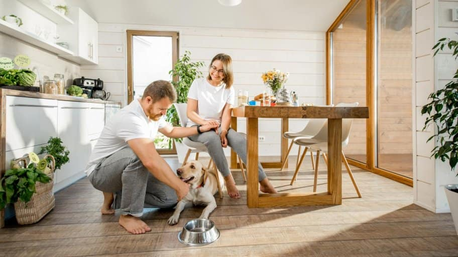 A young couple playing with their dog in the kitchen of their country house