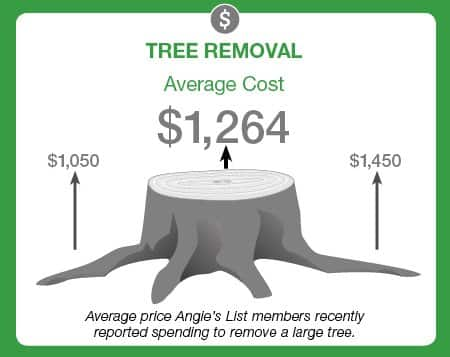 average price to remove a large tree