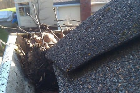 Like traditional gutter guards, foam guards help keep leaves, sticks and other debris from collecting in the gutter system. (Photo courtesy of Angie's List member Patrick P. of Lopez Island, Washington)