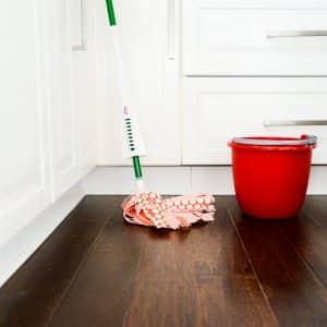 hardwood floors, mop, bucket