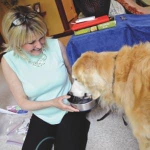 pet hospice visits dog
