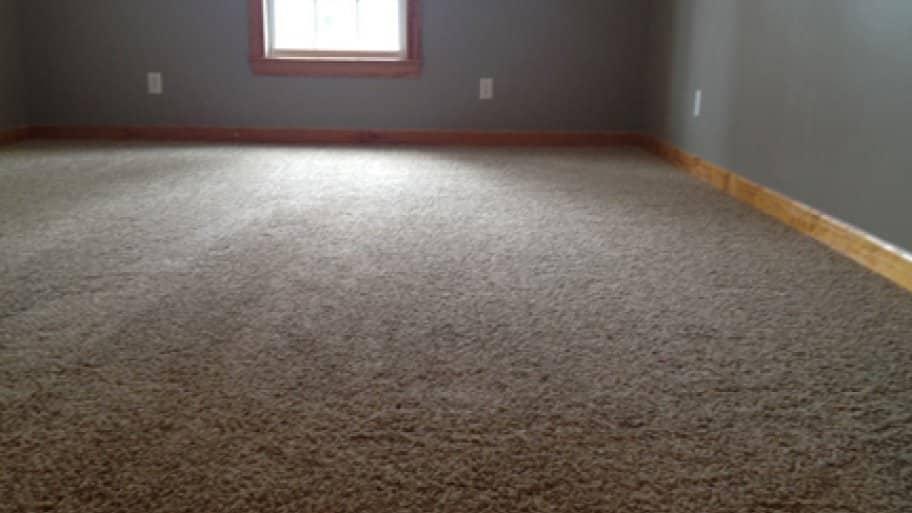 creaking floor carpet